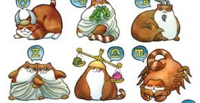 12 cung hoàng đạo - Zodiac