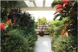 """Những """"mảng xanh"""" được xem là nơi để đất thở và che bớt nắng cho nhà"""