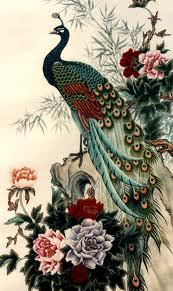 Hoa điểu và chim công