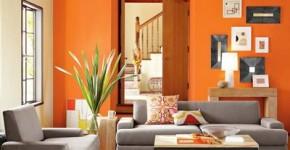 Màu da cam giúp kích thích hoạt động trí não