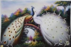 Treo tranh chim công được cho là mang lại may mắn, vượng khí